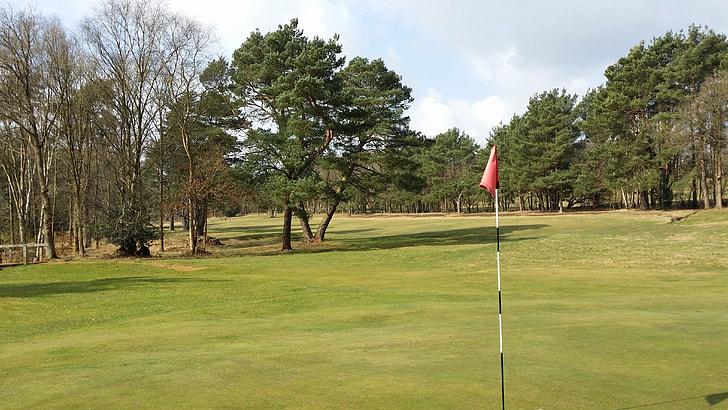 golf-course-flag-hole.jpg